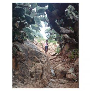 äthiopisches Kind im Kaktuswall