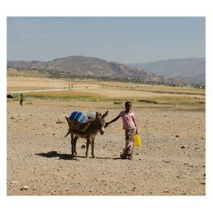 äthiopisches Mädchen mit ihrem Esel, der mit Wasserkanistern bepackt ist